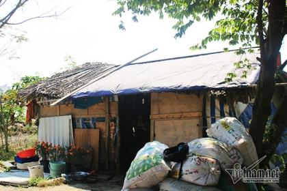 Cuộc đời kỳ lạ trong căn chòi nát trên đất vàng triệu đô Sài Gòn