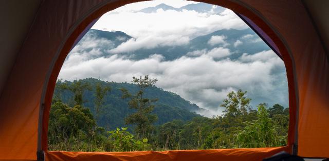 Hiện nay, nhiều khu resort gần Hà Nội phát triển thêm các hoạt động thể thao ngoài trời dưới những vườn cây lớn để khuyến khích khách du lịch tham gia trải nghiệm, hòa mình với thiên nhiên. Nắm bắt được tâm lý khách hàng không chỉ có nhu cầu được nghỉ dưỡng xanh mà cần những nguồn thực phẩm đảm bảo, một số khu resort cũng đã tích hợp thêm vườn rau sạch. Tiêu biểu là Ohara Famstay – mô hình nghỉ dưỡng sinh thái kết hợp nông nghiệp đầu tiên xuất hiện tại Việt Nam.