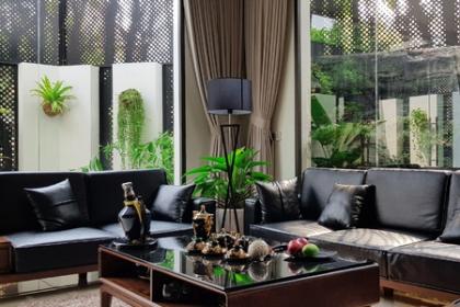 Quây tôn 1/3 nhà, gia chủ Vĩnh Phúc có nơi ở xanh như rừng