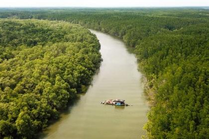 Vợ chồng hơn 40 năm sống giữa rừng ở ngoại thành Sài Gòn