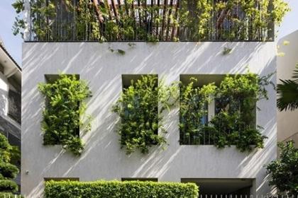 Ngôi nhà tránh nóng với rừng cây xanh tại TPHCM