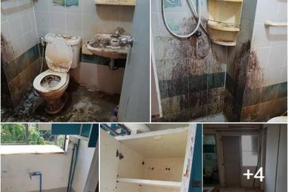 Nhận nhà sau 9 năm cho thuê chủ nhà sững sờ với cảnh tượng bên trong