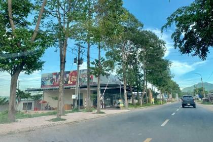 Qua sự việc phân lô trên đất nông nghiệp của Cty CP Địa ốc Alibaba – cơ quan quản lý Nhà nước thấy gì?