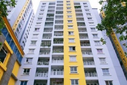 Cư dân Carina sẽ được trở về căn hộ của mình vào tháng 9/2018