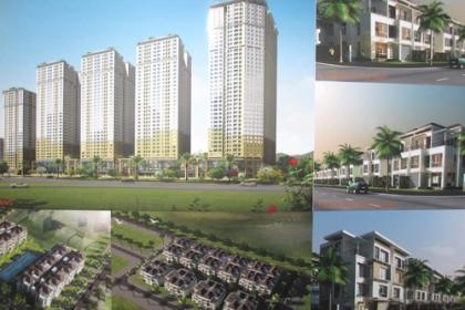 Mở bán và cho thuê 413 căn nhà ở xã hội tại Đông Anh, Hà Nội
