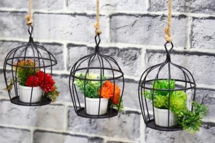15 ý tưởng làm vườn treo trong nhà