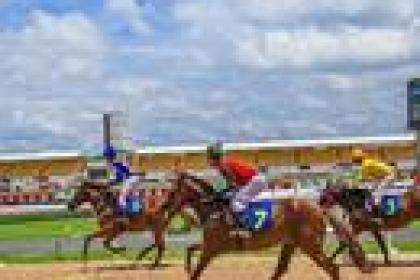 Đà Nẵng xây trường đua ngựa và sân golf gần 2 tỷ USD để hút du khách