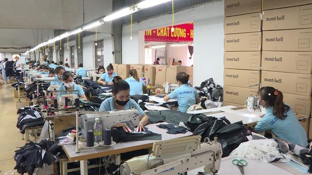 Thái Bình: Chú trọng đẩy mạnh công tác giải quyết việc làm cho người lao động - Ảnh 1.